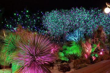 Winter Lights: האירוע המרכזי של החורף