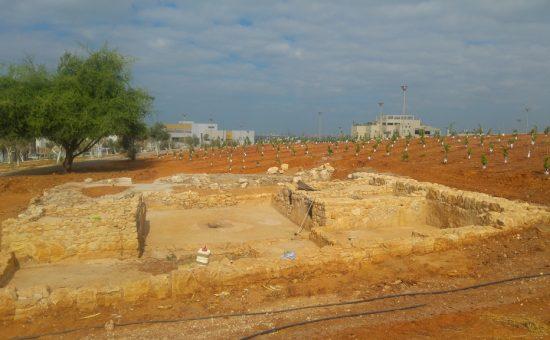 אירועי הקיץ - הפארק הארכיאולוגי