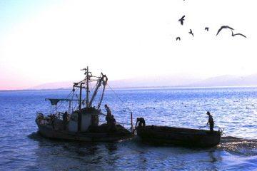 """1.000 ש""""ח ליום: דייג ליום אחד"""