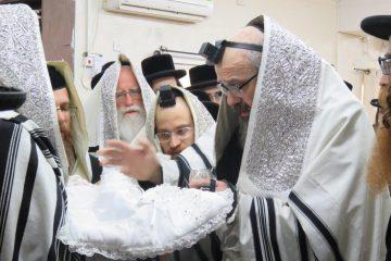 """האדמו""""ר מויזשניץ בית שמש – בחיפה"""