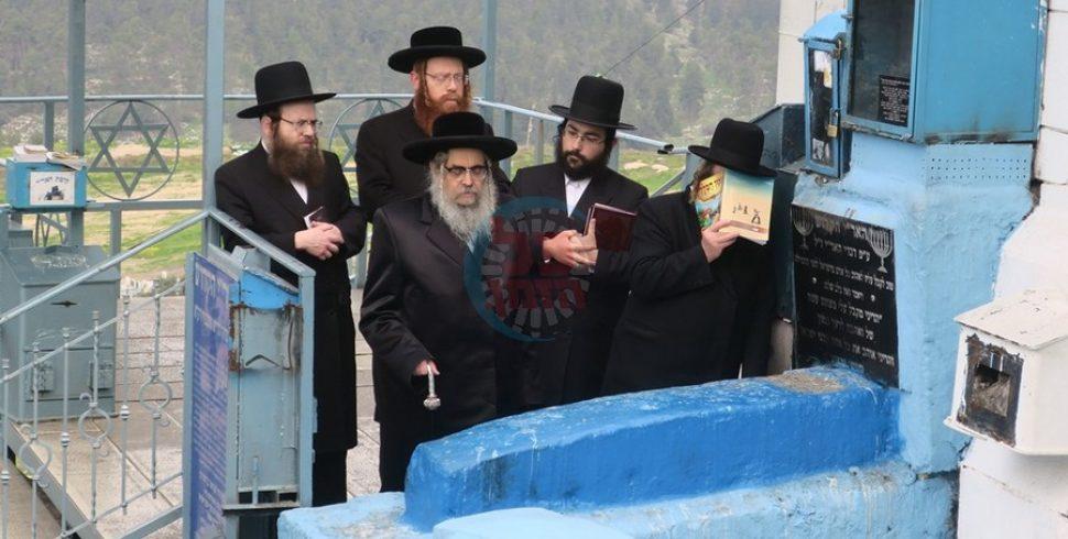 """גלריית סיכום: האדמו""""ר מסאטמר בישראל"""
