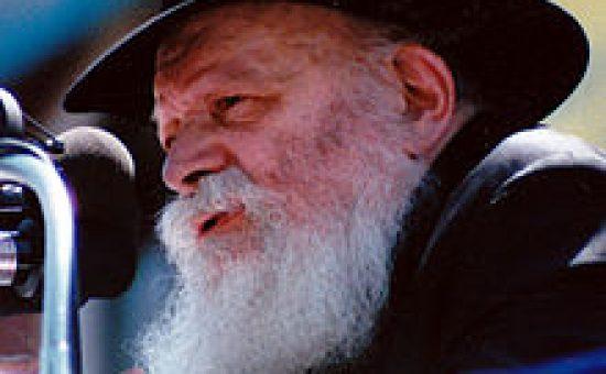 האדמו''ר רבי מנחם מנדל שניאורסון | ויקפדיה