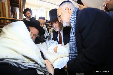 """האב נהרג בבסיס צה""""ל – שר התורה בירך בלידת בנו"""