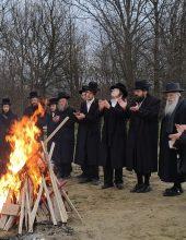 רימינוב: מסע הקודש ומעמד הישועות