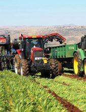 """מנכ""""ל משרד החקלאות: החקלאים מרוויחים"""