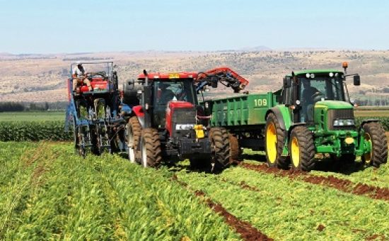 החקלאות בגליל בסכנה