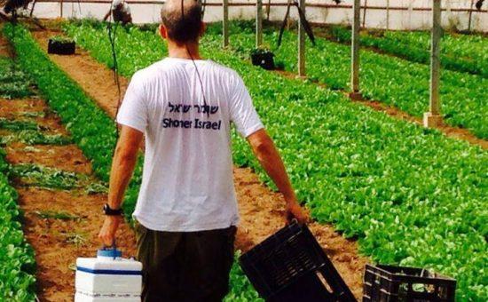 חקלאי בשדות. צילום: חקלאים לעתיד החקלאות