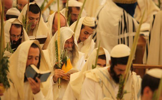 הרב דודקביץ בהושענה רבא - קרדיט צילום - אישי חזני