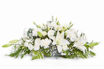 לכבוד שבועות: היכן תמצאו את הצבע הלבן לחג?