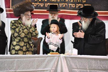שפע שמחות: חלאקה בחצר הקודש ויז'ניץ