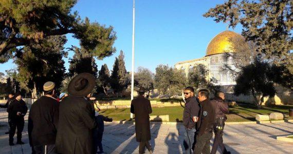 """המזימה הטורקית נחשפת: 4.500 ש""""ח עבור פרובוקציה בהר הבית"""