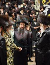 ה'חתן מאהל' בחצרות ויזניץ וייען סאדרהעלי