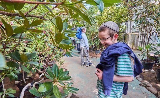 ילדי מוסקובה בגן הבוטני, צילום לוי נאזרוב (35)
