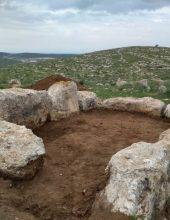 מצבא יהודה לצבא ההגנה לישראל