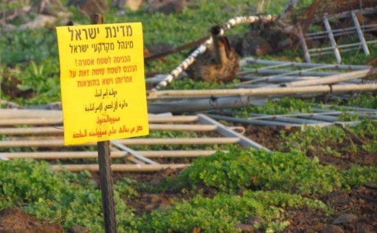 צילום: מנהל מקרקעי ישראל