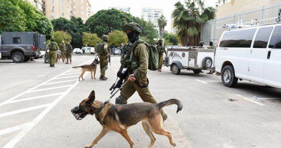 כוננות בתל-אביב ומצוד בואדי-ערה