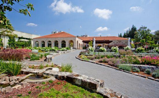 מרכז המבקרים ביקב רמת הגולן