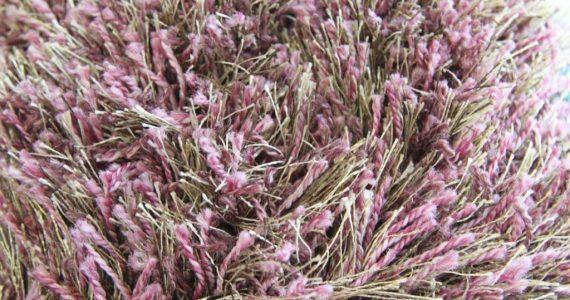 שאגי: השטיח הצבעוני שישדרג לכם כל פינה בבית