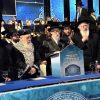 """תיעוד: סיום הש""""ס בחיפה"""