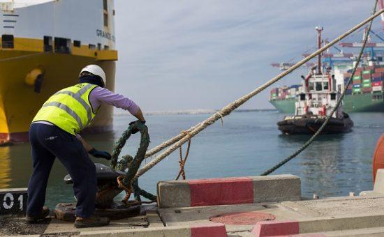אילוסטרציה! עובד בנמל אשדוד, צילום:פבל טולצ'ינסקי עובד בנמל אשדוד, צילום:פבל טולצ'ינסקי