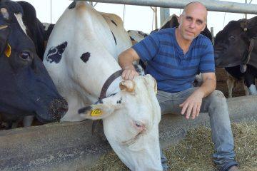 האם קיים צו מניעה ל'הסכם החלב'