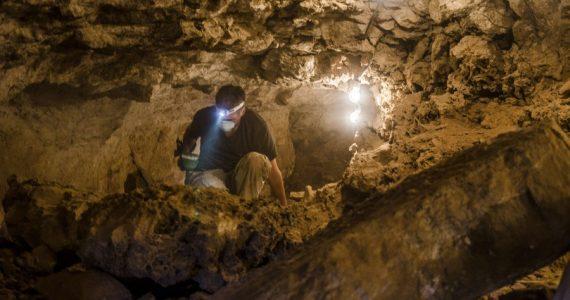 עשרות ממצאים ארכאולוגיים התגלו בעפר שלא סונן לפני כ-18 שנה