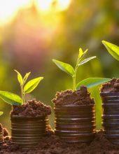 קופת גמל להשקעה – מסלול נכון יותר לחיסכון