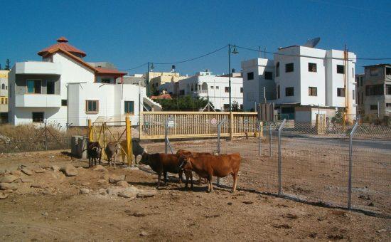 הכפר עג'ר