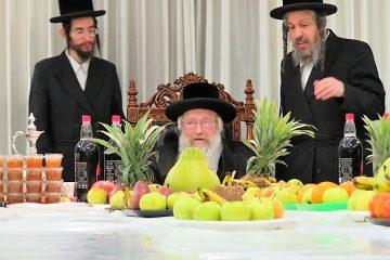 """תיעוד: ט""""ו בשבט בנדבורנה חיפה"""