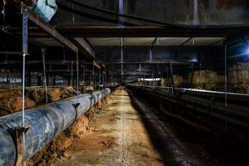 סיור במנהרות הרכבת הקלה בבני ברק