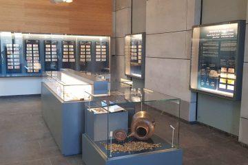 חדש בבנק ישראל: המטמונים העתיקים