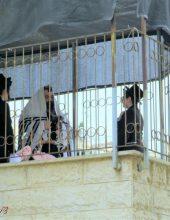מרהיב: תפילת המרפסות של 'רמת ויז'ניץ'