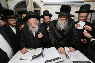 """צפו: האדמו""""ר ממודז'יץ ורבי שמעון גלאי אצל רשב""""י"""