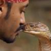 וְאַתָּה תְּשׁוּפֶנּוּ עָקֵב? צפו בלוכד שהתנשק עם הנחש