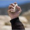 ארבעה שוטרים נפצעו קל בירושלים