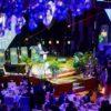 גלריית ענק: חג הגאולה במוסקובה