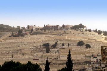 זעם: עיריית ירושלים מבקשת לבנות 'מרכז מבקרים' בהר הזיתים