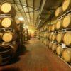 איזה יין להביא לארוחה בחגים? • קבלו את ה'מורה נבוכים' השלם ליין