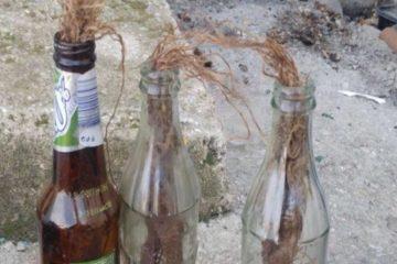 תיעוד: יידו בקבוקי תבערה – ונעצרו