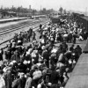 יומן הנער שברח מהולנד בשואה