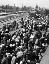 """פניה למלך הולנד ולוותיקן: יהודים אומצו בשואה ע""""י נוצרים"""