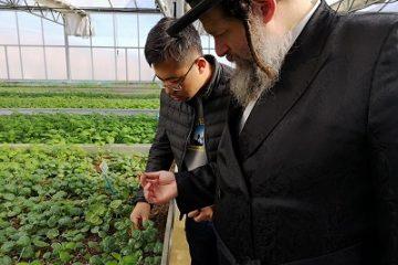 חשש: ראש השנה הסיני, ימנע אוכל מפסח היהודי