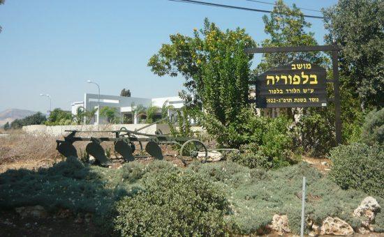 בלפוריה, צילום: ויקיפדיה