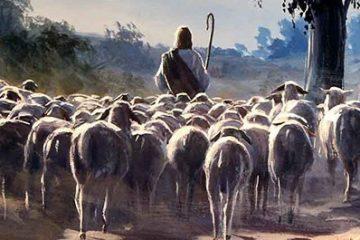 לינץ' בהר חברון: עשרות ערבים מול רועה צאן