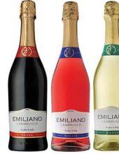 למברוסקו: סדרת יינות מבעבעים במתיקות עדינה