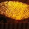 מבוכה: טביעת האצבע נלקחה מהמכונית ולא מהסם