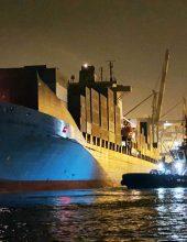 נמל אשדוד: הצי גדל ומתחדש