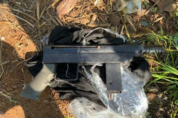 תיעוד: הכלבה הסגירה את הנשק למשטרה
