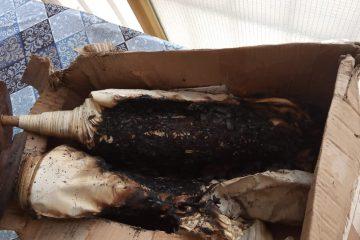 מזעזע: שרפו ספר תורה וזרקו