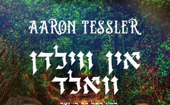 Aaron Tessler - In Vildn Vald Single Cover Final